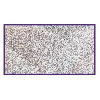 Silver glitter 3 g